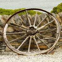 Old Wilted Wheel leaning on side