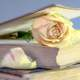 Open Book with Rose in it