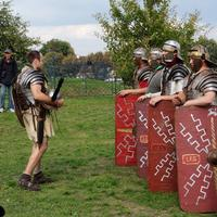 People Dress up as medieval knights and shields