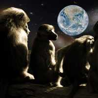 Planet of the Apes looking at earth