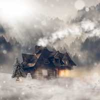 Snowfall scene with cabin in the pine forest