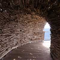 Wooden sticks tunnel
