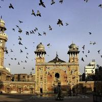Pigeons flying over Wazir Khan Mosque in Lahore, Pakistan