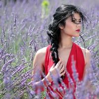 Beautiful Girl in Lavender Flowers