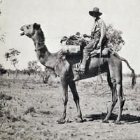 Black and White Photo of Michael Terry riding a camel