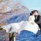 bride-and-groom-kissing-by-the-lake