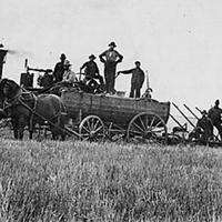 Farmers on horse wagon old photo