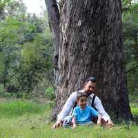 Father and Child sitting under a tree