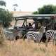 First Lady Melania Trump on a Safari looking at Zebras