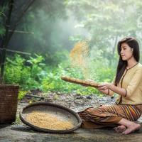 Girl Gathering Rice in Southeastern Asia