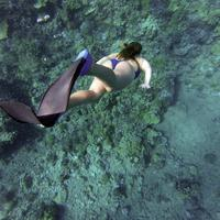 Girl Scuba Diving in the ocean