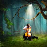 man-playing-the-cello-with-light-coming-down
