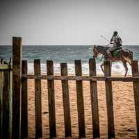 Man riding a horse on the beach by the ocean
