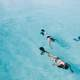 people-swimming-and-diving-in-the-water