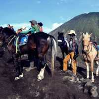 People with horses on the mountain