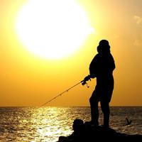 Person fishing on the shore at sunset