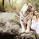 pretty-girl-in-white-dress-next-to-white-bengal-tiger