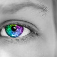 Purple, blue, and green Iris eye
