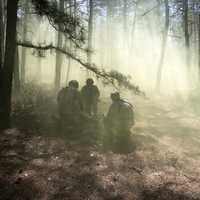 Soldiers in the forest in the morning mist