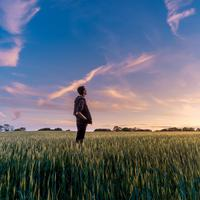 Sunset with man standing in a grassy field