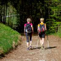 two-kids-walking-with-ski-poles