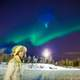 watching-the-northern-lights-from-the-ground