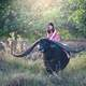 woman-riding-water-buffalo