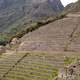 Terrace Steps at Machu Picchu, Peru