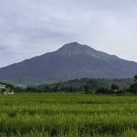 Mount Canlaon landscape in the Philippines