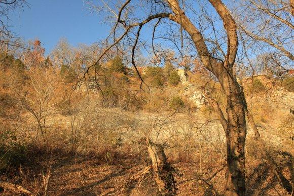 Cliffs at Castlewood