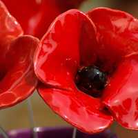 Plastic Red Poppies flowers