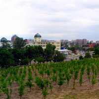 Panorama of the city from the vineyards in Zielona Gora, Poland