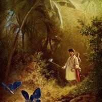 The Butterfly Hunter Art