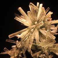 Gypsum V. Selenite