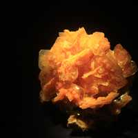 Wulfenite from San Francisco Mine