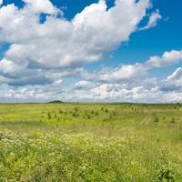Landscape of the fields under the sky with clouds in Russia