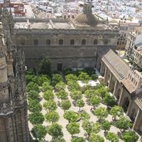 Courtyard of the Cathedral in Seville, Spain