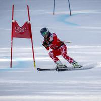 Skier running a Giant Slalom Course