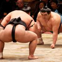 Sumo Wrestlers facing off in the ring