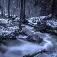 Rushing Brook in the Winter in Sweden
