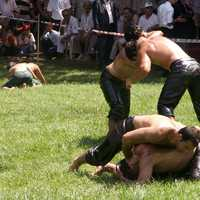 Oil-wrestling at Kırkpınar, Turkey