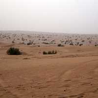 Desert and Sand Landscape