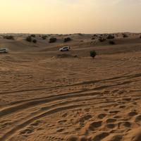 Off-road vehicles in deserts of Sharjah in the United Arab Emirates