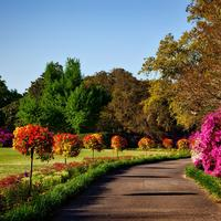 Other alabama photos free stock photos and public domain for Bellingrath coupons