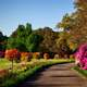 Bellingrath Gardens landscape in Alabama