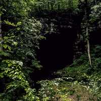 Entrance to Russell Cave in Alabama
