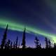 Aurora Borealis in Denali National Park, Alaska
