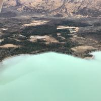 Coastlines, Trees, and Landscape in Katmai National Park
