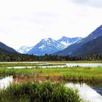 Landscape with Mountains with wetlands in Alaska