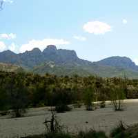 Catalina State Park in Oro Valley in Arizona